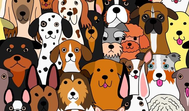 色んな種類の犬