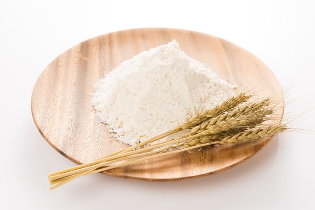 ドッグフード 小麦